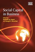 Cover Social Capital in Business