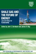 Cover Shale Gas and the Future of Energy